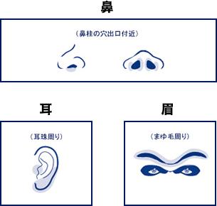 耳・鼻・まゆ脱毛